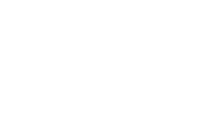 Wartenberg Cosulting logo