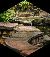 Stone path in a garden