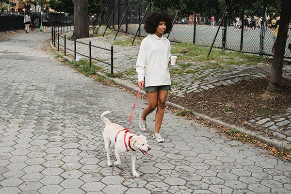 Woman walking her dog on sidewalk