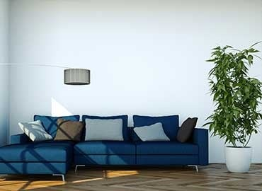 Living room with dark blue sofa and white walls
