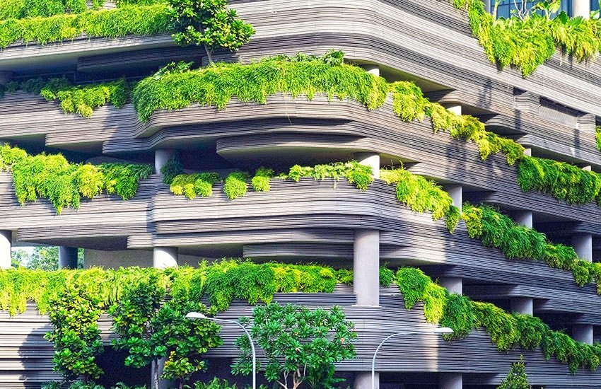 A tree-covered building